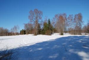 talvinen pellonreuna