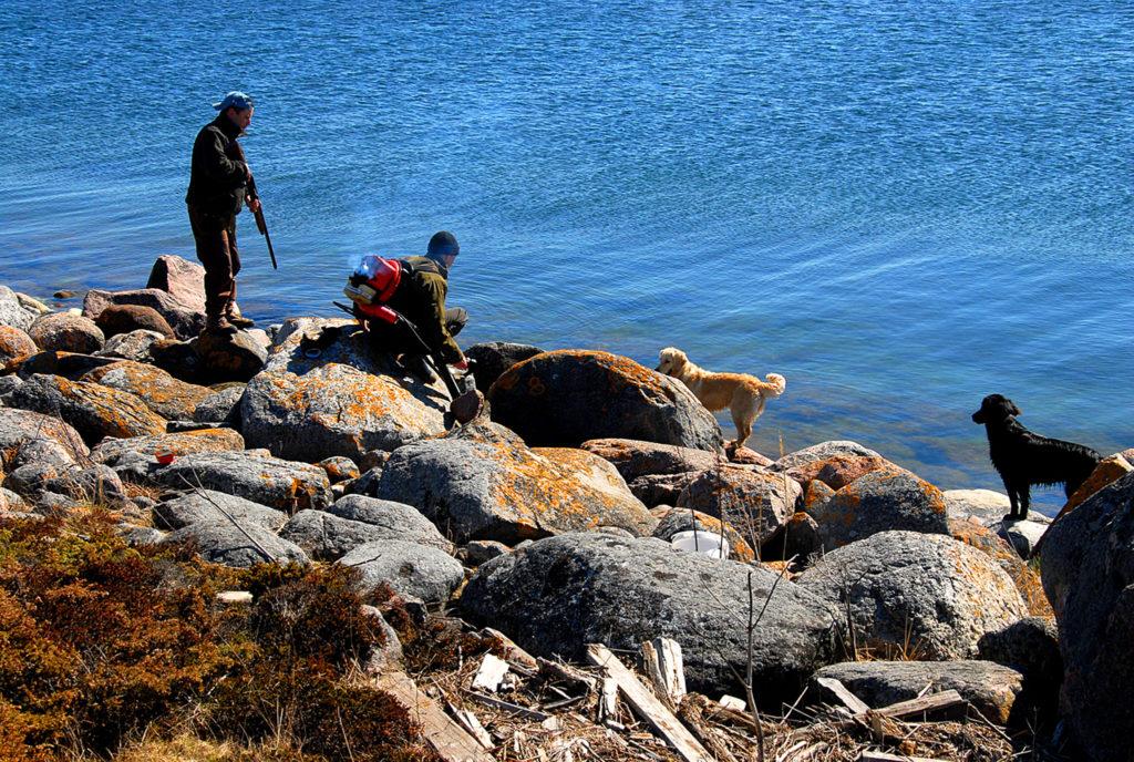 Metsästäjiä ja koiria rannalla