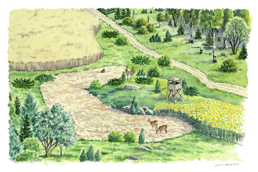 piirros peltomaisemasta, jossa kaksi hirvieläintä
