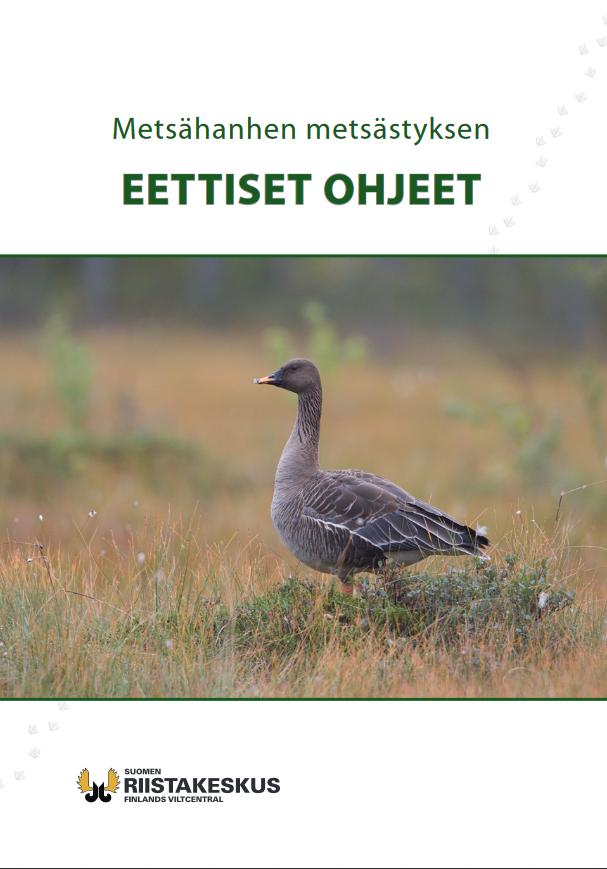 Metsähanhen metsästyksen eettiset ohjeet -esite