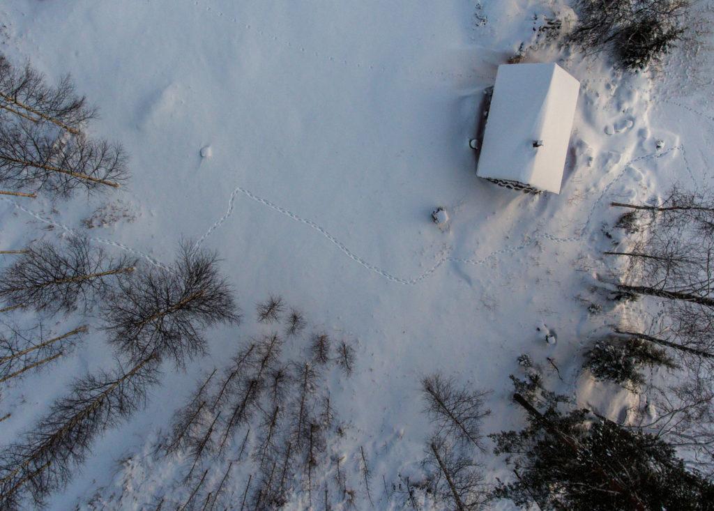 Ahma on kulkenut rakennuksen vierestä talvella.