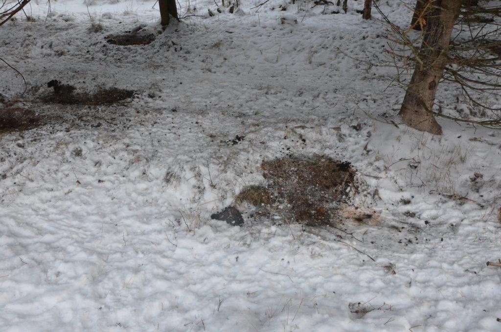 Lumeen on sulanut makuuksien jälkiä.