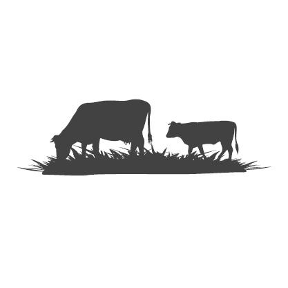 Piirroskuva laiduntavista lehmistä