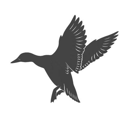 Teckning av en and.