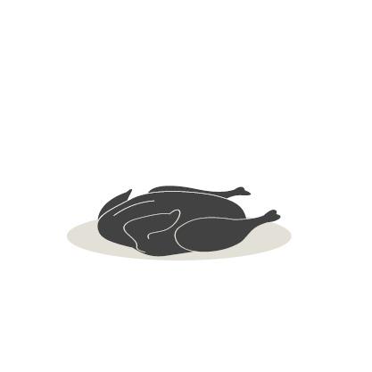 Teckning av en plockade andfågel.