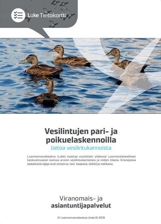 Vesilintujen pari- ja poikuelaskennoilla tietoa vesilintulaskennoista -tietokortin etusivu