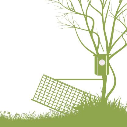 Piirroskuva jossa supiloukku on pyynnissä ja telkänpönttö puussa