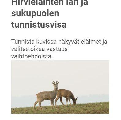 Hjortdjurtest 2
